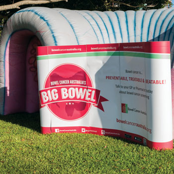 The Big Bowel – funded 2016