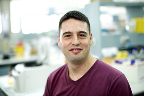 Gene for leukaemia treatment success identified
